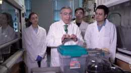 Food waste to graphene
