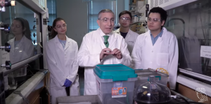 Food waste to graphene
