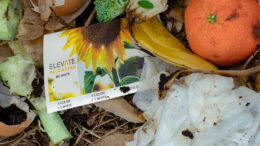 Elevate adhesive compostable labels